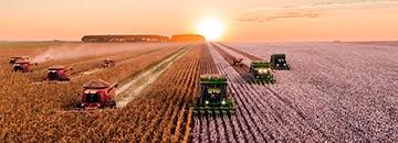 Техникум агробизнеса в Свидвине